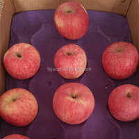 Fresh Red Fuji Apple Red Fuji Gold delicious green apples