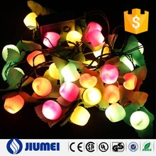 2015 New Arrival Apple Fruit String Light LED