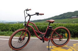 wholesale girl electric bike with conversion and dealer and lithium battery
