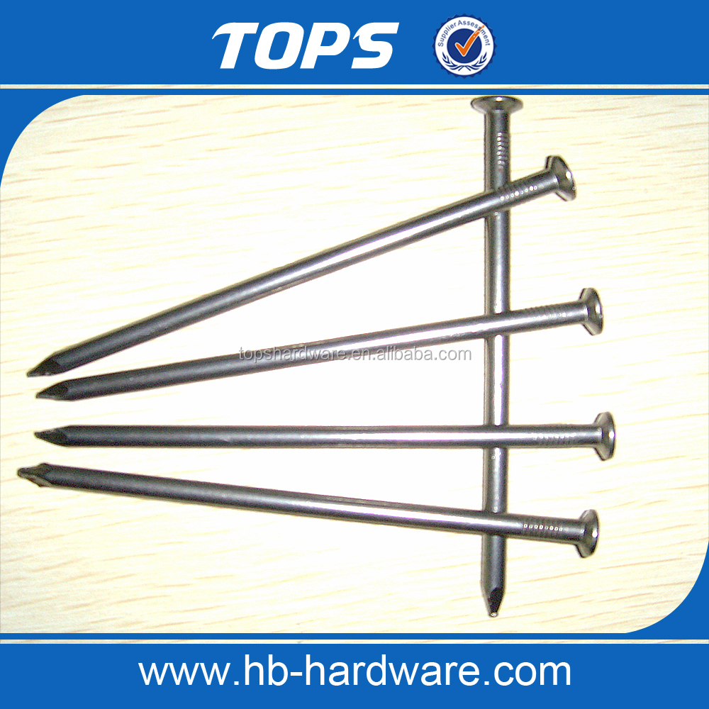 concrete nails common nail iron nail factory