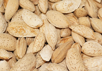ALMOND IN SHELL AL050