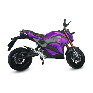 Adult big power electric motorcycle
