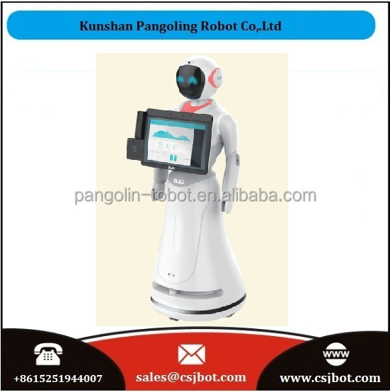 Humanoid robot touch screen information provider