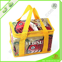 Disposable Cooler Bag For Shopping Or Travel Carry cake Cooler Bag
