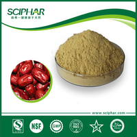 Jujube Date powder for solid drink industry