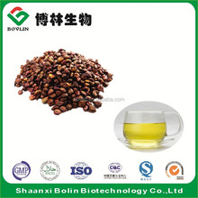 Shaanxi Bolin Manufacturer Supply Grape Seed Extract Organic Grape Seed Oil