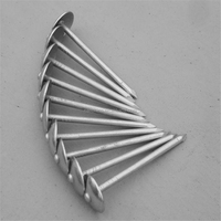 high quality and reasonable prices umbrella head roofing nails with rubber washer