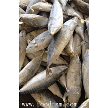 ready stock bonito fish