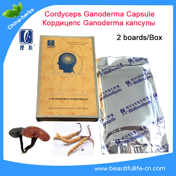 Herbal food supplement cordyceps sinensis capsules OEM