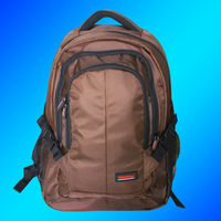 Hot Selling High Quality wholesale hiking 800D Polyester Backpack