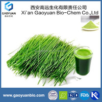 Natural Organic Food Color Green Barely Grass Extract