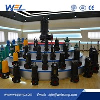 Submersible Sewage Pump Agriculture Irrigation Submersible