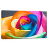 Colorful Rose Flower Canvas Prints Art/New Wall Decor Art/Framed Wall Paintings Living Room