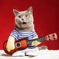 Funny Clothes Pet supplies Guitar design Guitarist rock style Halloween Costume cat Dog Costumes Cosplay