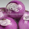 Small Red Onion Direct from Grower