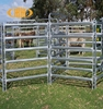 China supplier cheap and hot sales welded sheep/rams/hogget/cattle railing fence