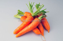 100% Natural Beta Carotene Food Color
