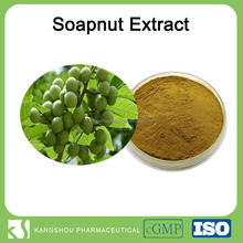 High quality Sapindus Mukorossi extract, soapberry extract,soap nut extract soapnut extract with saponin