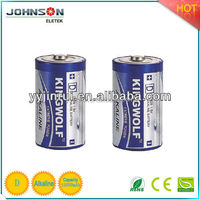 D alkaline battery LR20 am1 segway x2