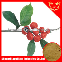 Hot Sale Guarana Extract Caffein10%,20%