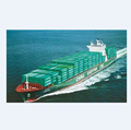 SEA FREIGHT FCL CONTAINER SHIPPING FROM SHENZHEN/GUANGZHOU/SHANGHAI/XIAMEN/QINGDAO TO ALEXANDRIA(old port)