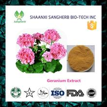 New product 2017 Pelargonium hortorum Bailey extract powder with best quality and low price