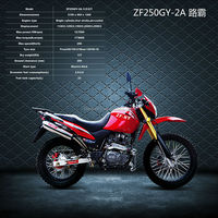 Enduro 250cc Dirt Bike ZF250GY-2A