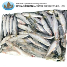 Wholesale whole round lighting catch frozen scomber japonicus pacific mackerel fish