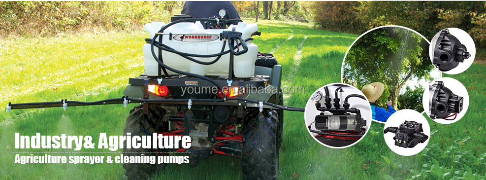 hot sale dc mini spray pump for pesticide/pesticide spray pumps/ pesticide pump spray