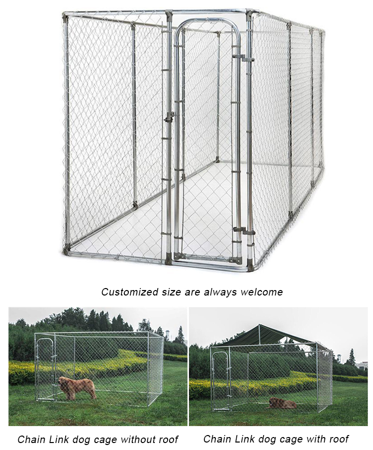 China wholesale or galvanized comfortable dog kennel buildings