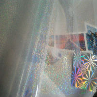 Excellent Quality And PET Round Dot & Snowflake Holographic Film For Packing