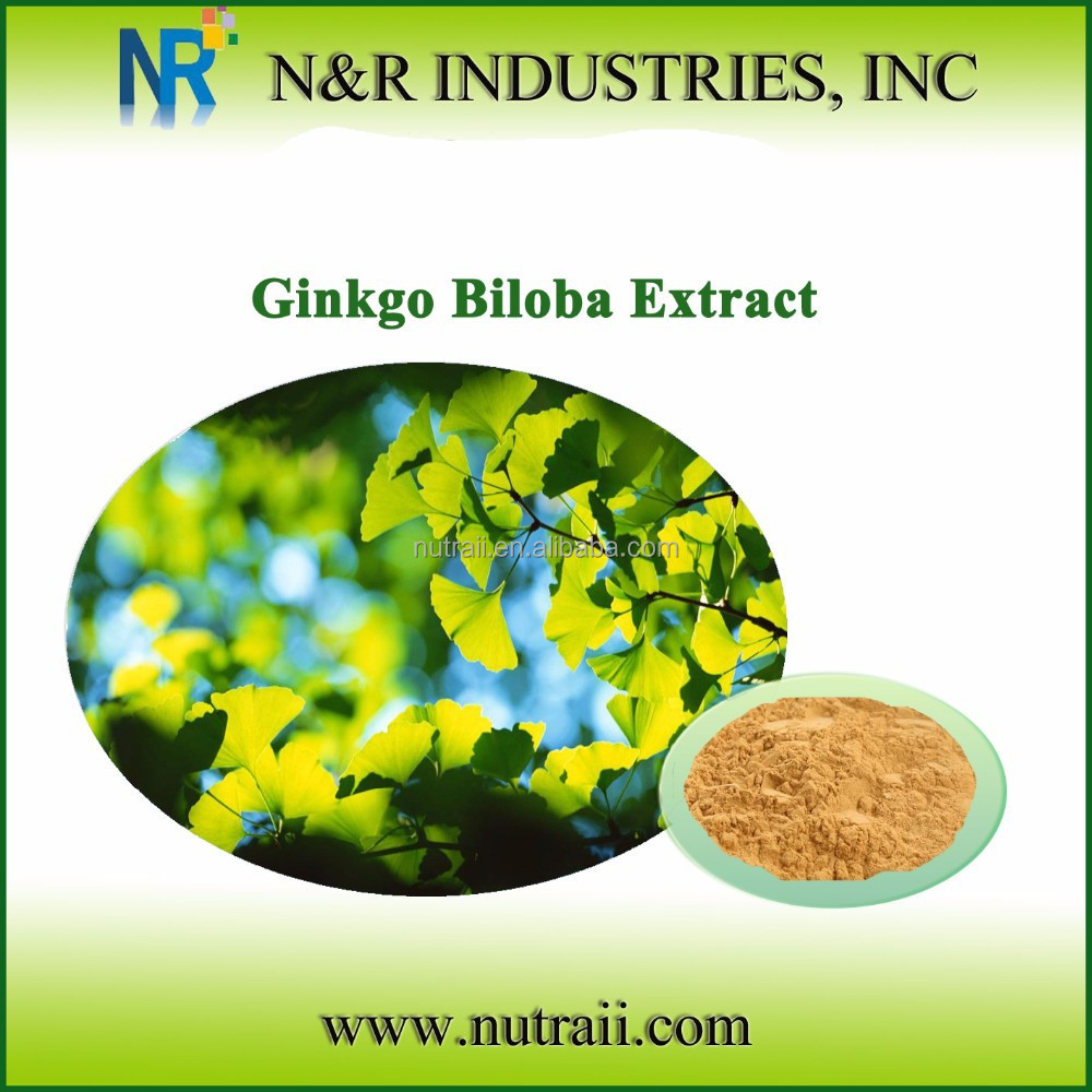 100% Benefits Ginkgo biloba leaves Extract 24% Total Flavones Glycoside