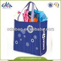 2014 Hot-selling eco bag ego bag