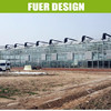 Well Design Agricultural Commercial Green House