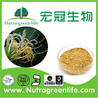 factory supply herb extract dried honeysuckle flower chlorogenic acid OEM capsules pills