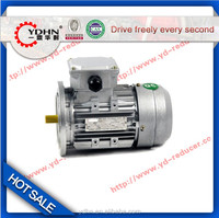 good quality light weight Y Series Three-Phase Motor with shaft