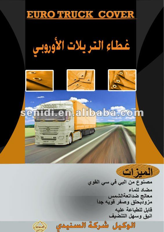Euro Truck Cover
