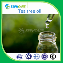 OEM / ODM natural organic fresh tea tree essential oil brands for aromatherapy