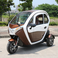 Factory direct sale Approval 2000w Power three wheel electric tricycle indonesia