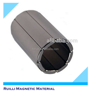 Professional customized neodymium arc magnets ndfeb neodymium