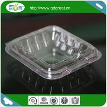 Wholesale Food Grade Disposable Fruit Packing Container