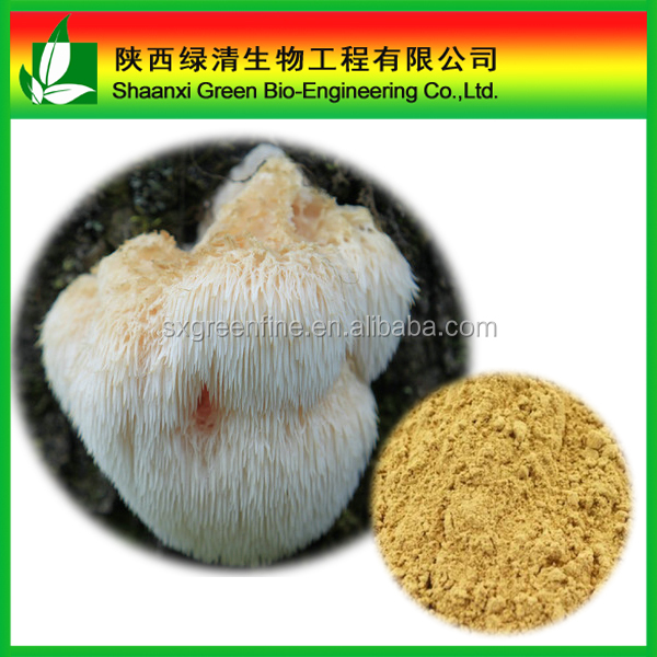 Pure Natural Plant Extracts Hericium Erinaceus Extract Polysaccharide 50%