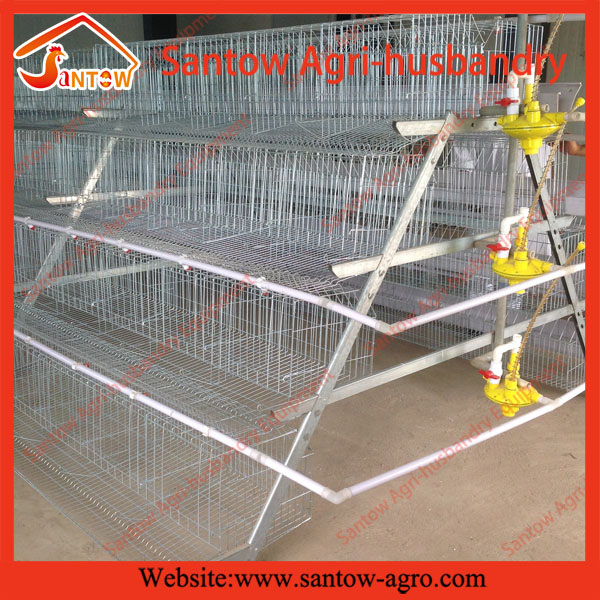Best selling, Good quality factory A-120 layer poultry cages (Welcome to vist my factory)