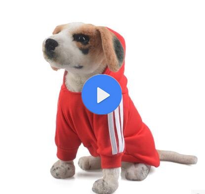 Hot sellingAutumn&winter clothes Wholesale Dog Clothes/Pet Clothes/Dog Apparel