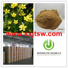 ranunculus ternatus thunb extract powder