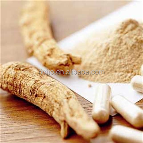 High Ratio angelica sinensis powder extract/Dang Gui 4:1, 10:1, 20:1