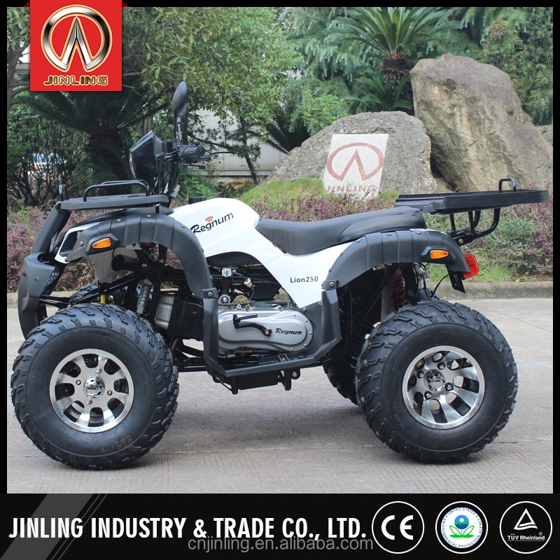Multifunctional tao tao atv made in China JLA-13-10-10