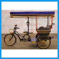 Classical Tourist Vehicle Fancy Electric Carriage Tricycle for Sale