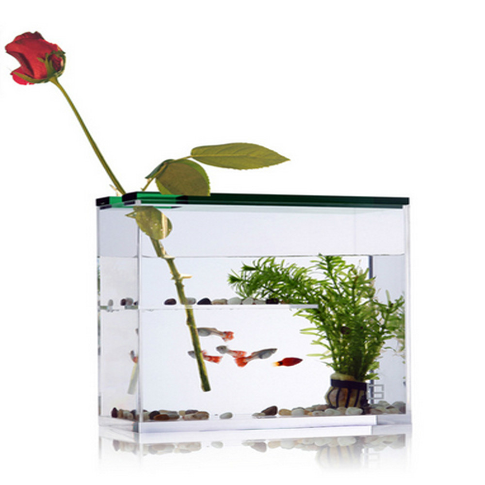 List manufacturers of cylinder acrylic aquarium buy for Wholesale tropical fish