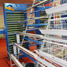 Layer Chicken Breeding Cage
